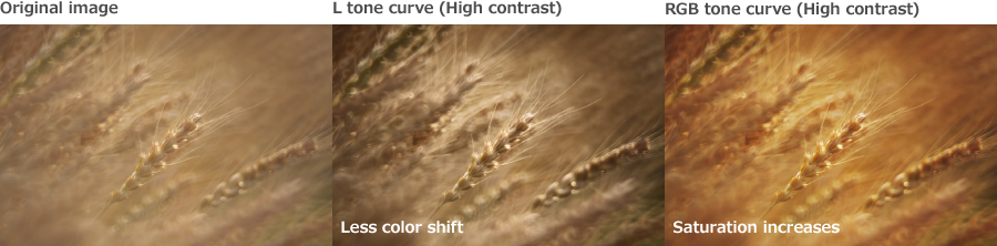 High Contrast Adjustments in Photography