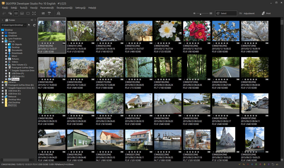 Fast photo browsing and selection in this SILKYPIX Workspace.