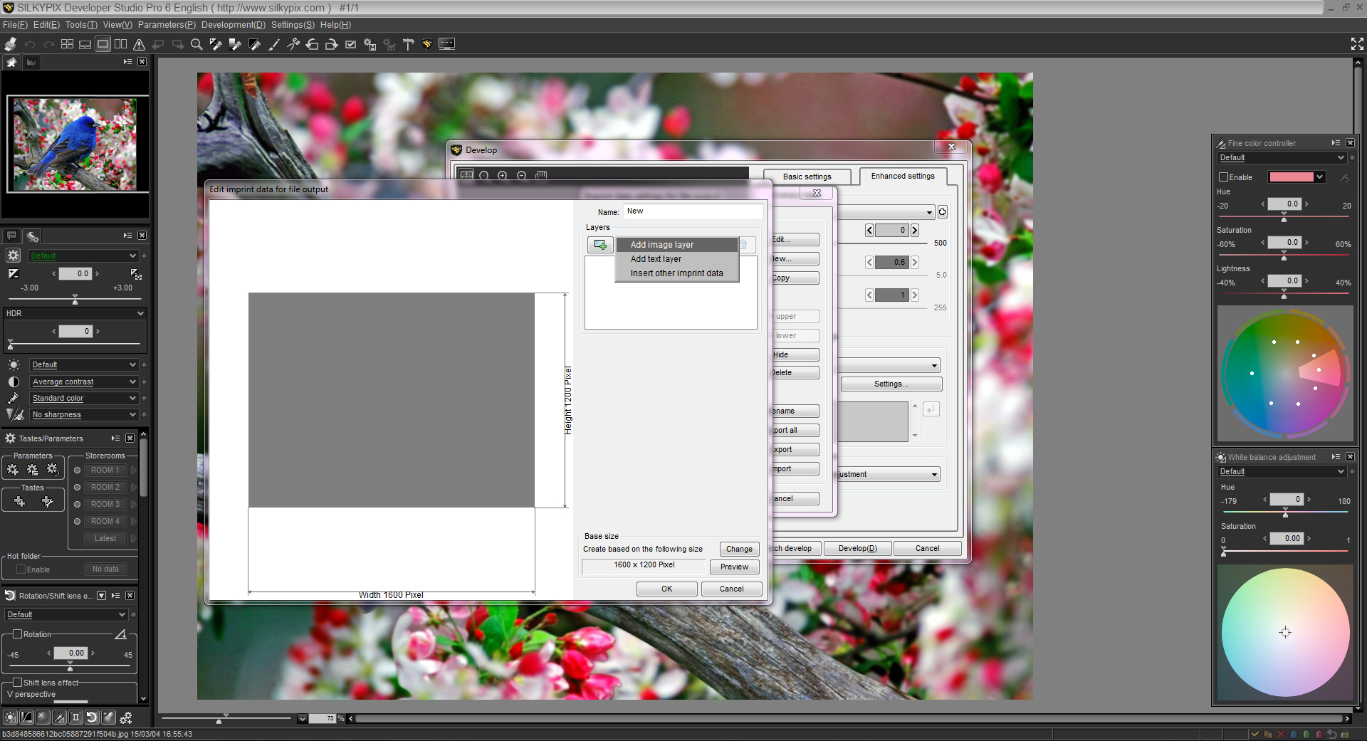 Add a Layer in the SILKYPIX template
