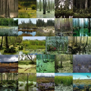 Dark Swamp Backgrounds Volume 1